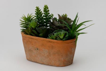 Искусственное растение в глиняном горшке Суккулент Hoff