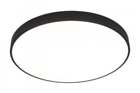Светильник потолочный ARENA ARTE LAMP