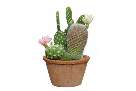 Искусственное растение в глиняном горшке Кактус Hoff