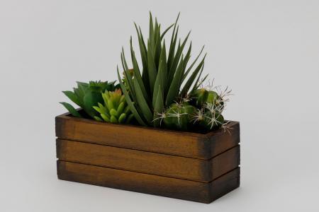Искусственное растение в деревянном ящике Суккулент Hoff